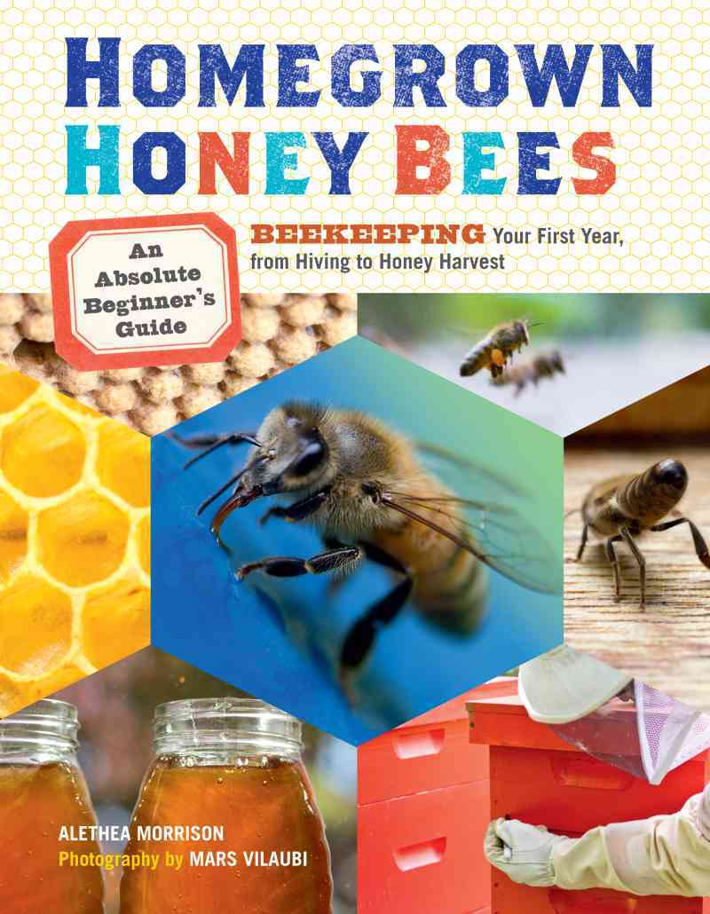Homegrown Honey Bees By Morrison, Alethea